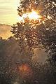 Magurski Park Narodowy 7.jpg