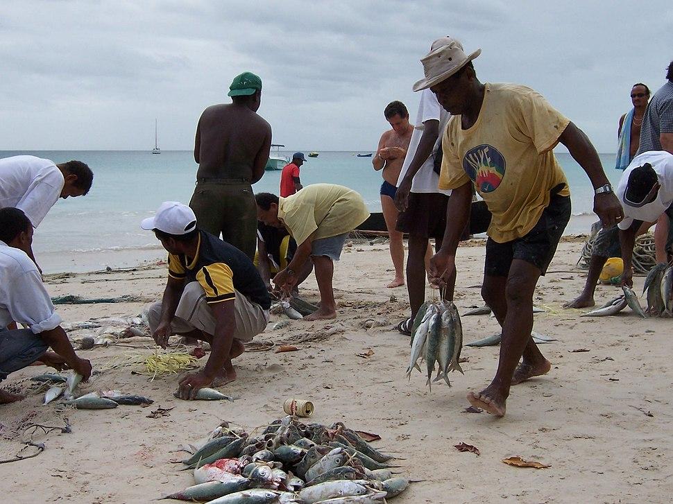 Mahé Beauvallon FishingOnThe Beach
