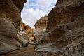 Makhtesh Ramon 17065 (13552979804).jpg