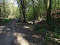 Malá Chuchle, cesta Čertovou strouhou, zábradlí (01).jpg