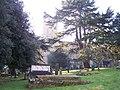 Malvern Churchyard - geograph.org.uk - 113655.jpg