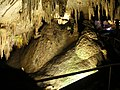 Mammoth Cave National Park 002.jpg