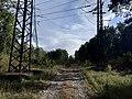 Manikhino-1 - Lukino old line 2019-09 5.jpg