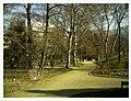 March Botanischer Garten Freiburg - Master Seasons Rhine Valley Photography 2013 - panoramio (5).jpg
