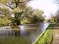 Market Harborough spur of the Grand Union Canal at Foxton - geograph.org.uk - 734848.jpg