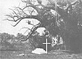 Mary Livingstone's grave at Sena, photograph taken by John Kirk in 1862.jpg
