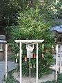 Mefu-jinja (Takarazuka) kigannoki.jpg