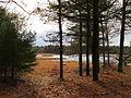 Middle Pond, Massasoit State Park, Taunton MA.jpg