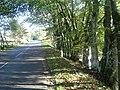 Milestone by A974 near Drumlasie. - geograph.org.uk - 264928.jpg