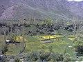 Minak in Yush road 29 - panoramio.jpg