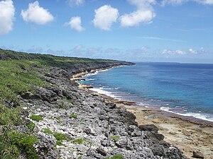 Daitō Islands - Phytocoenosis on east coast of Minamidaitō Island.