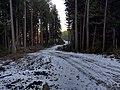 Mission, BC, Canada - panoramio (1).jpg