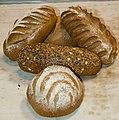 Mixed bread loaves.jpg
