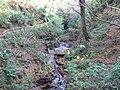 Morag's Fairy Glen - geograph.org.uk - 611261.jpg