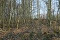 Motte op de Butsberg te Tielt-Winge - 372397 - onroerenderfgoed.jpg