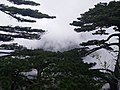 Mount Huangshan–Climbing 04.jpg
