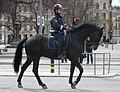 Mounted Police Stockholm.jpg