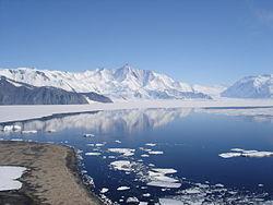 Lago Orgánico Antártico