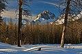 Mt Heyborn Morning Sun.jpg