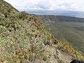 Mt Longonot crator.jpg