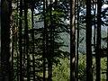 Muránska planina, Jaskova muka, pohled JV 01.jpg