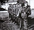 Nachtigall Battalion.jpg