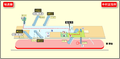 Nakamura Kuyakusho station map Nagoya subway's Sakura-dori line 2014.png