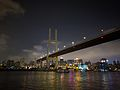 Nanpu Bridge 2016.6.5-1.jpg
