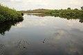Nationaal park De Groote Peel 03.jpg