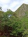 Naturaleza de Ciudad Valles - San Luis Potosí.jpg