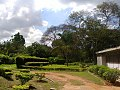 Nature in Dar es salaam.jpg