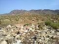 Navidhand new 407 - panoramio.jpg