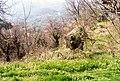 Nazaioi - panoramio.jpg