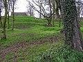Near Castle Garden, Lisburn - geograph.org.uk - 1227036.jpg