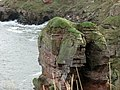 Needles Eye, North of Berwick-upon-Tweed - geograph.org.uk - 324235.jpg