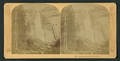 Nevada Falls, 700 feet, Cal, by Littleton View Co. 2.png