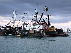 New Zealand Boat Fishing-3271.jpg