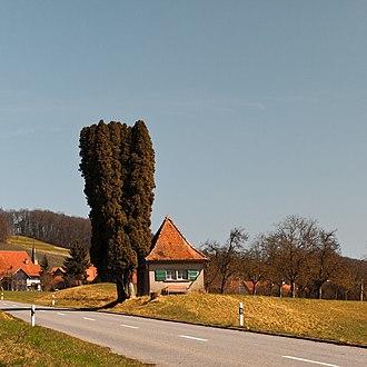 Neunforn - Niederneunforn Village, Neunforn