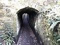 Niton Tunnels 10.jpg
