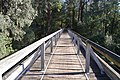 Noojee Trestle Bridge 004.JPG