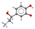 Noradrenaline-from-xtal-view-3-3D-bs-17.png