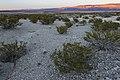 North base of Lone Butte - Flickr - aspidoscelis.jpg