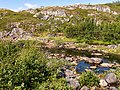 Norway Finnmark River P1290522.jpg