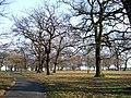 Norwood Park, London Borough of Lambeth, SE27 (3304700274).jpg