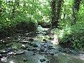Nunney Brook. - panoramio.jpg