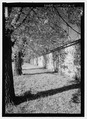 Oblique view of south wall, looking west - Fort Stanton, Stable, State Highway 220, Fort Stanton, Lincoln County, NM HABS NM-212-A-2.tif