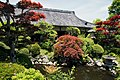 Ofusa-kannon Kashihara Nara pref Japan08s3.jpg