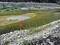 Olimpos - panoramio (15).jpg