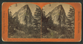 One of the Three Graces, Yosemite Valley, California, by Reilly, John James, 1839-1894.png