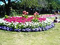 One of the flower beds in Bancroft gardens, Stratford-Upon-Avon - geograph.org.uk - 1096649.jpg